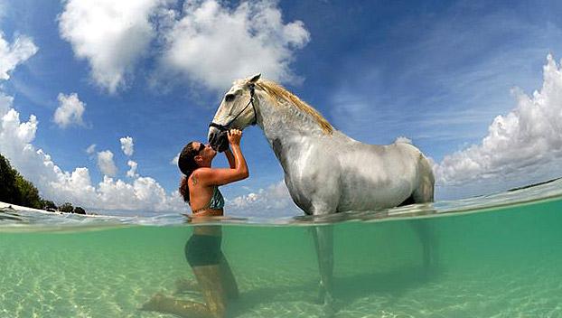 paardrijden_bonaire